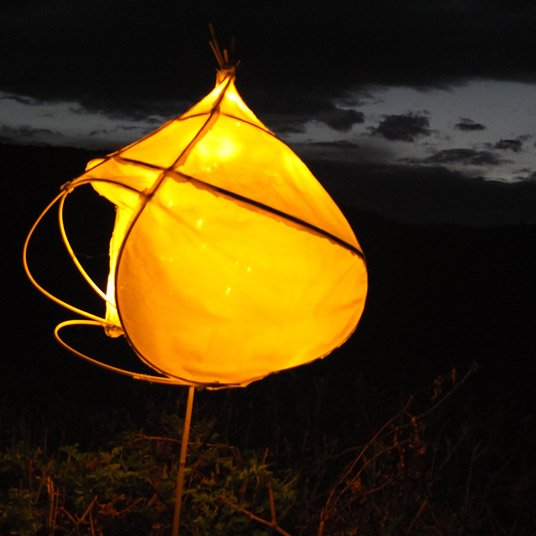 Berkshire Lantern Walk