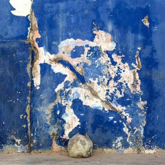 Member Gallery Talk: Venice Biennale